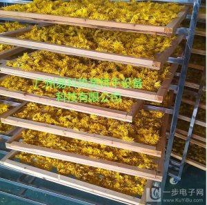 梅州市易立诺皇菊厂家直销烘干设备